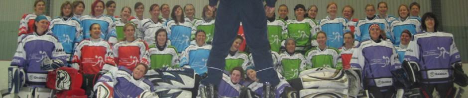 cropped-webHeader_ice-hockey-2.jpg